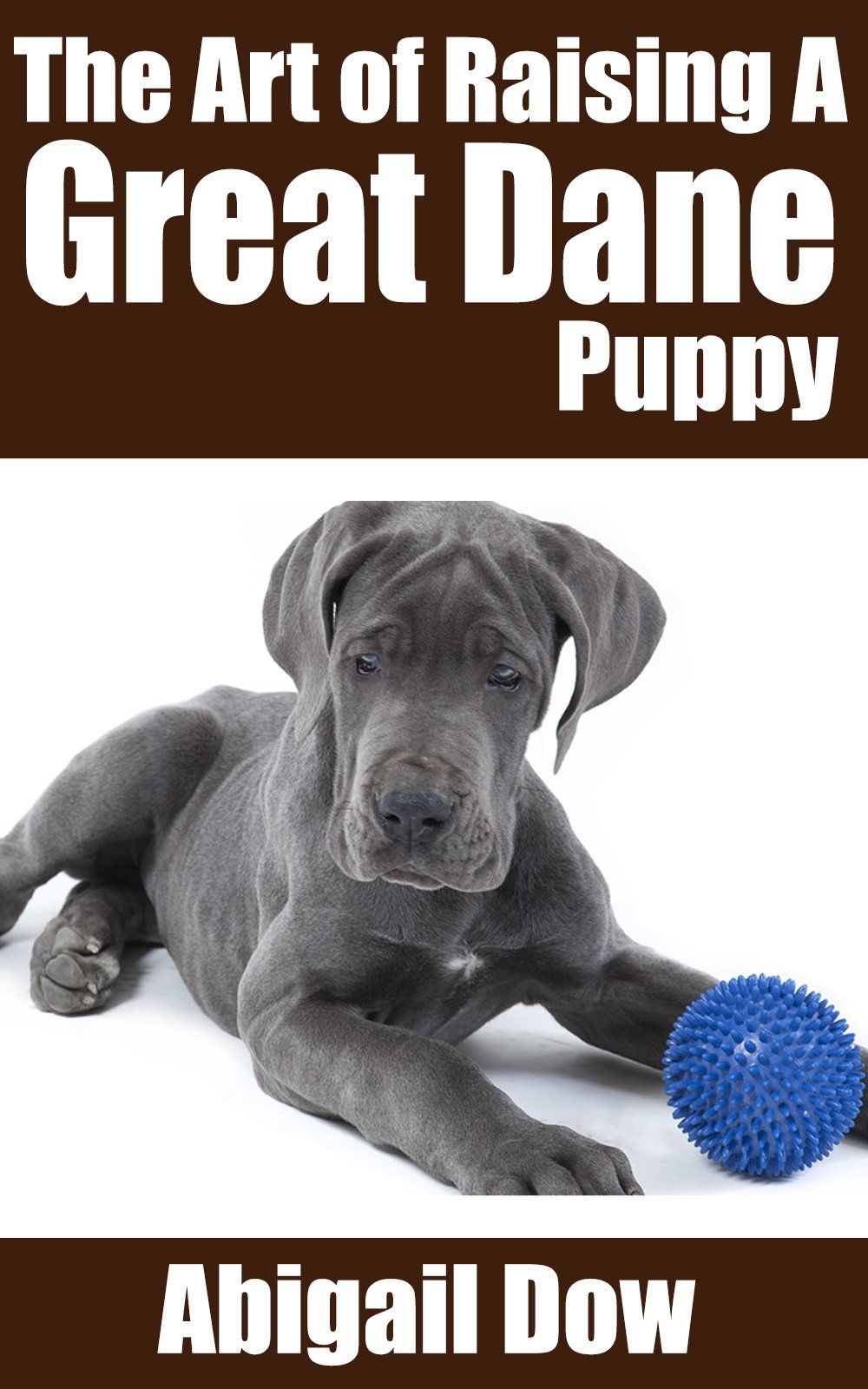 The Art Of Raising A Great Dane Puppy From Puppyhood To Adult Dog