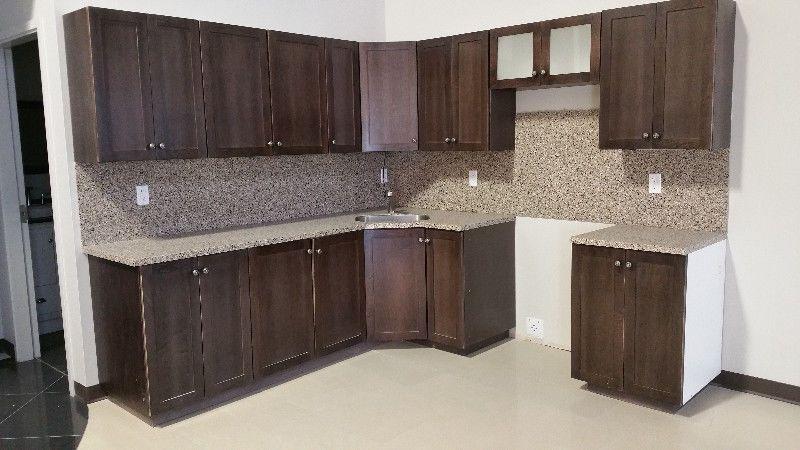 Kitchen Cabinets And Quartz Countertops Cabinets & Countertops