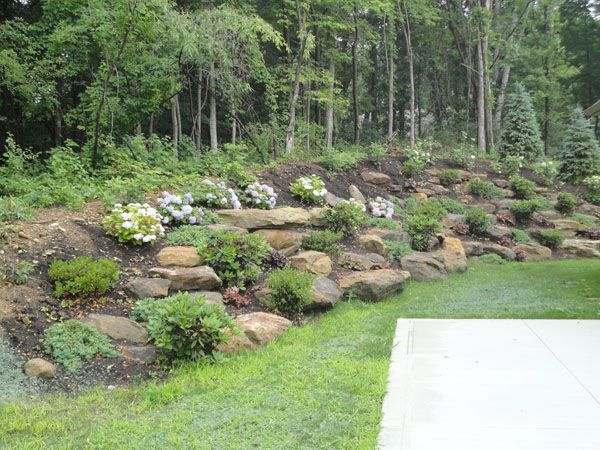 image result for natural looking low maintenance landscape design evergreen on a hill