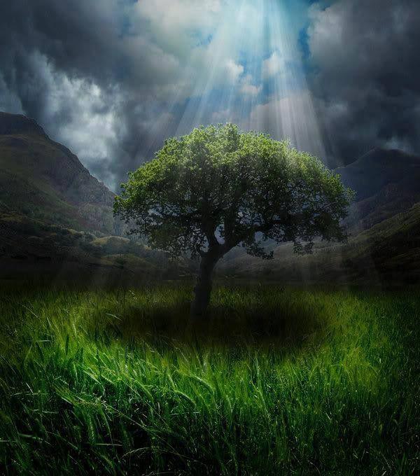 Αποκάλυψη Το Ένατο Κύμα: Αναγνωρίστε ότι όλα είναι μέρος της εσωτερικής μας...