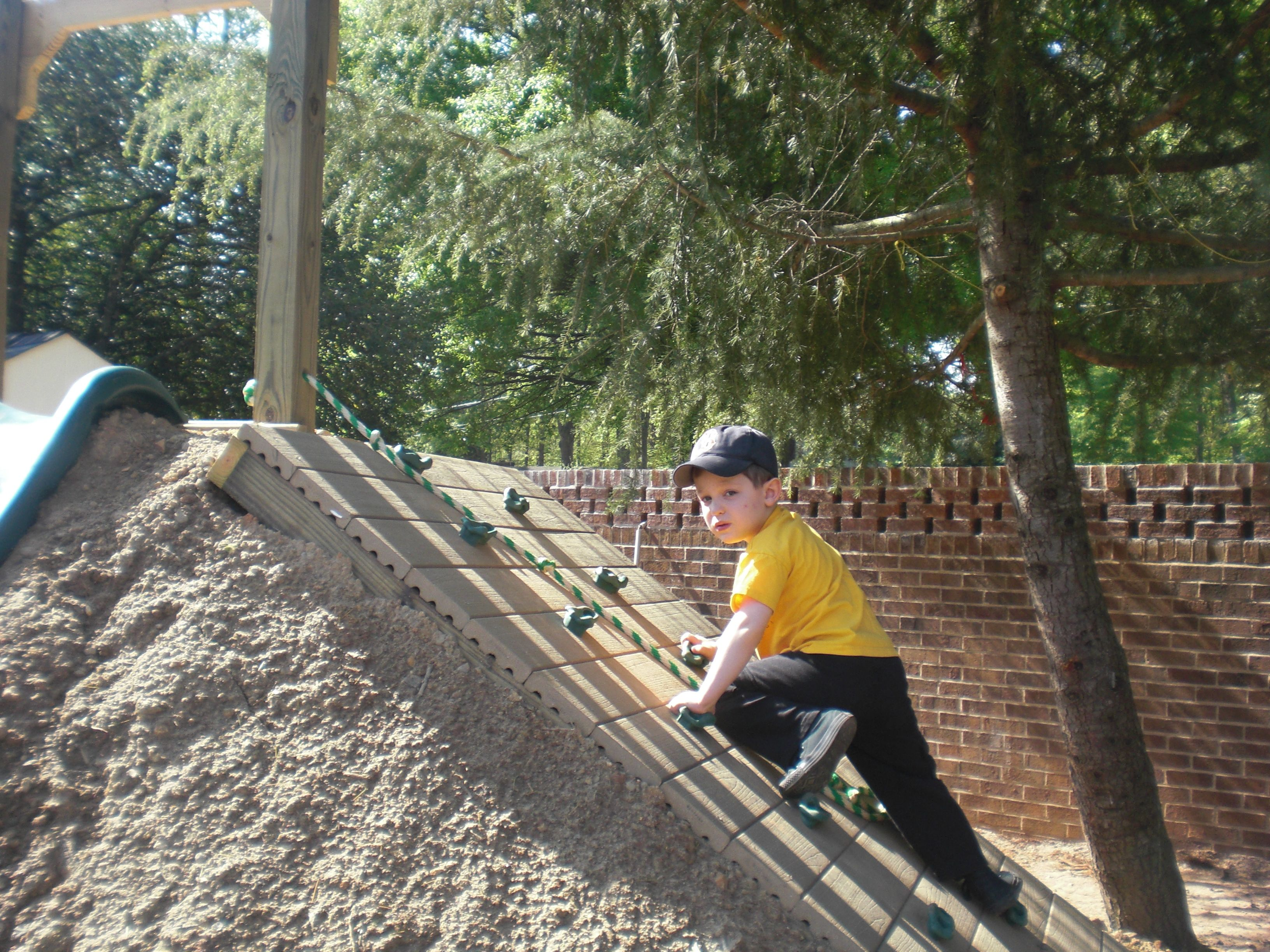 Rock wall & rope leading up to hill slide | Back Yard ...