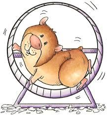 25+ Hamster Clipart Black And White