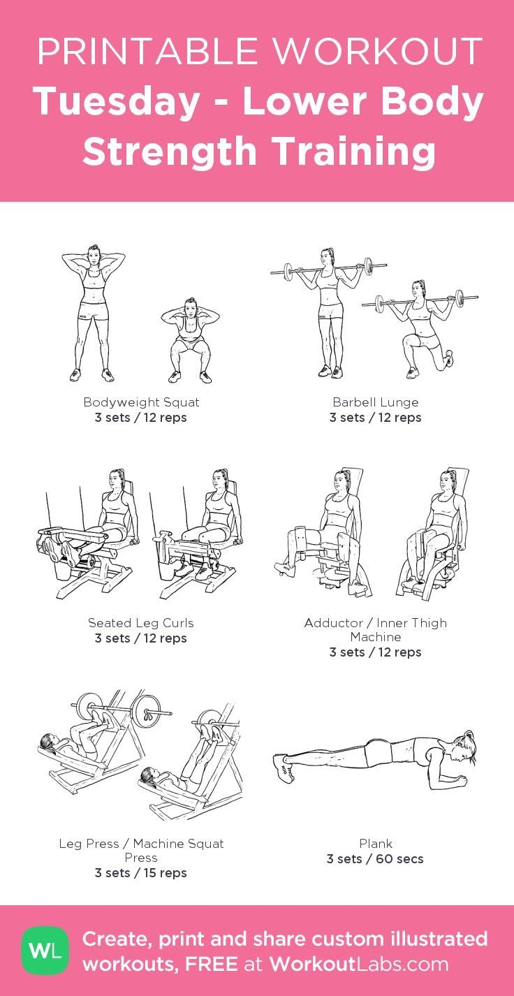 Pin by amina on gym total workout fitness