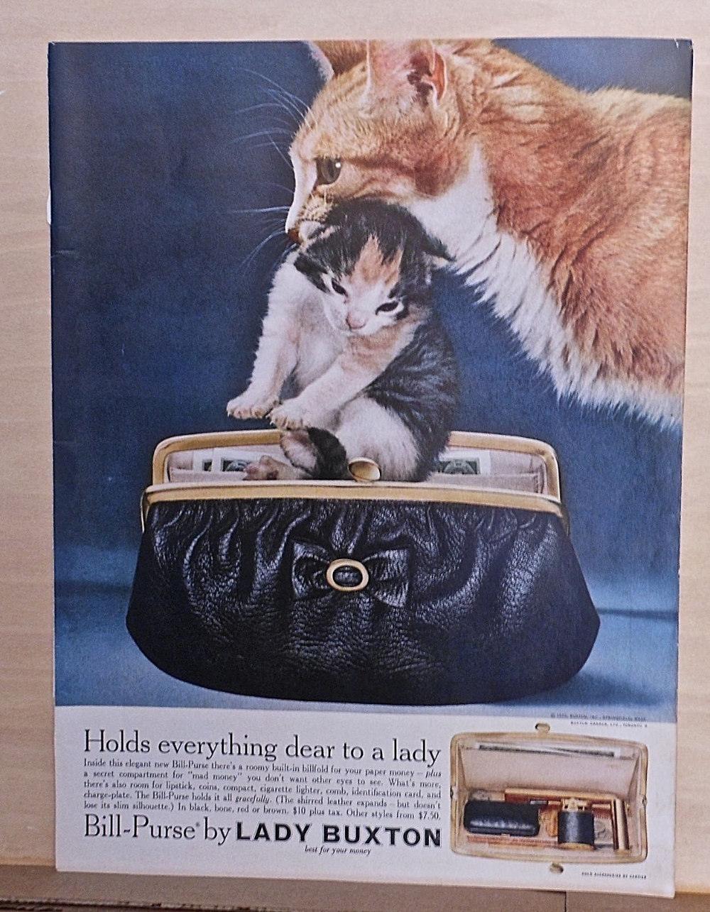 Pin By Falin Perth On Cats Vintage Cat Kitten Food Animals