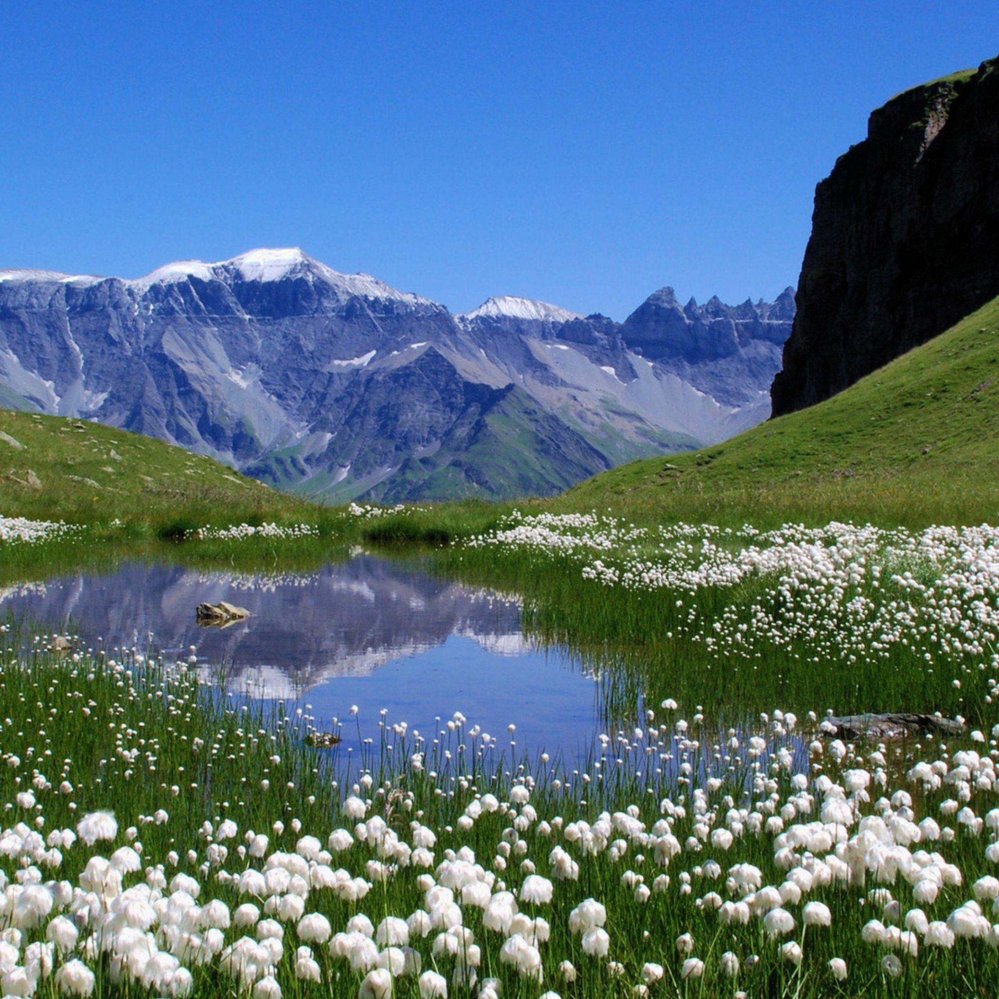 2048x2048 Papel de Parede montanhas, flores, lago