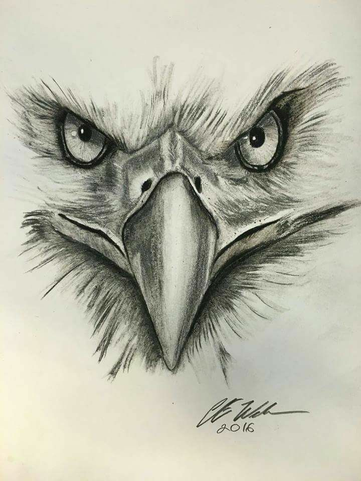 Pin by Nguyen Thanh on Tatoo | Eagle drawing, Eagle ...