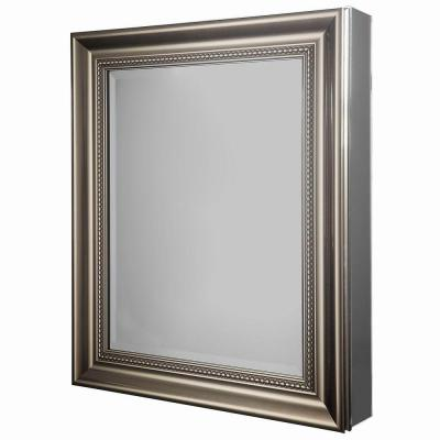 Glacier Bay 24 In W X 29 18 In H Framed Recessed Or Surface Mount