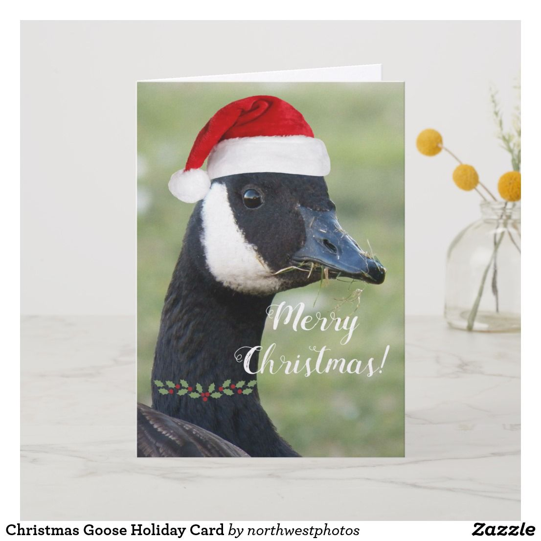 Christmas goose whimsical photo holiday card