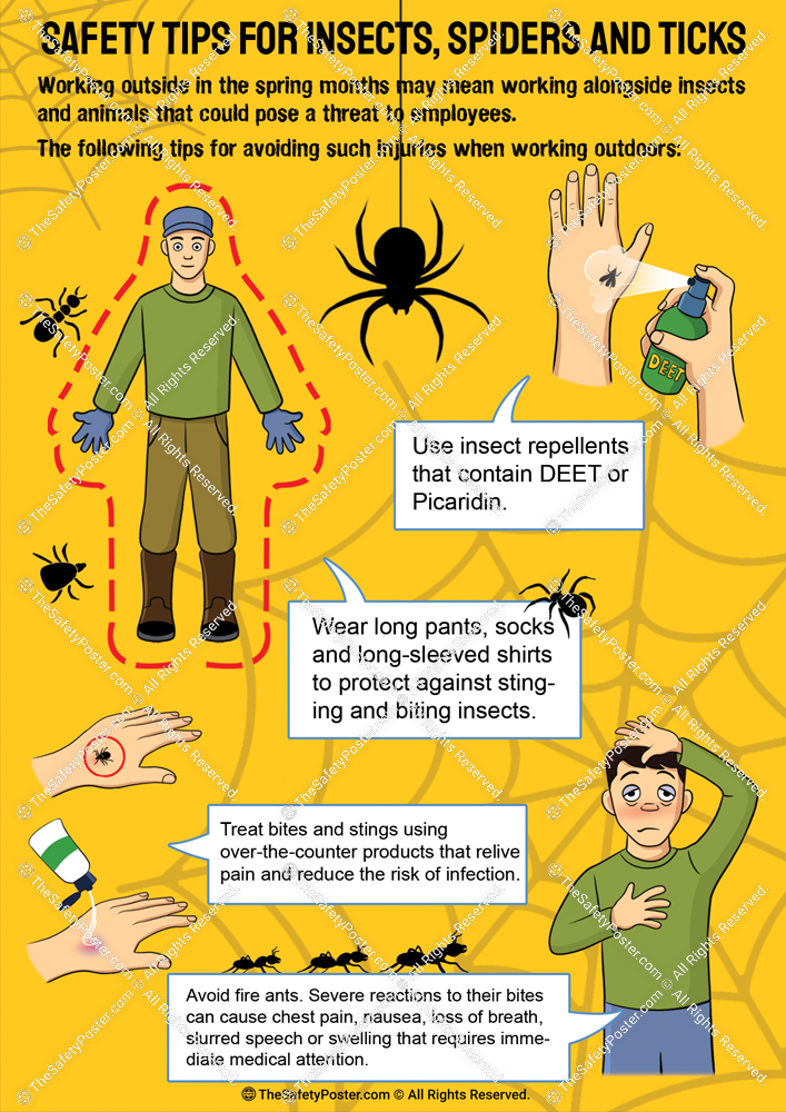 Safety tips for insects, spiders and ticks in 2020 (With