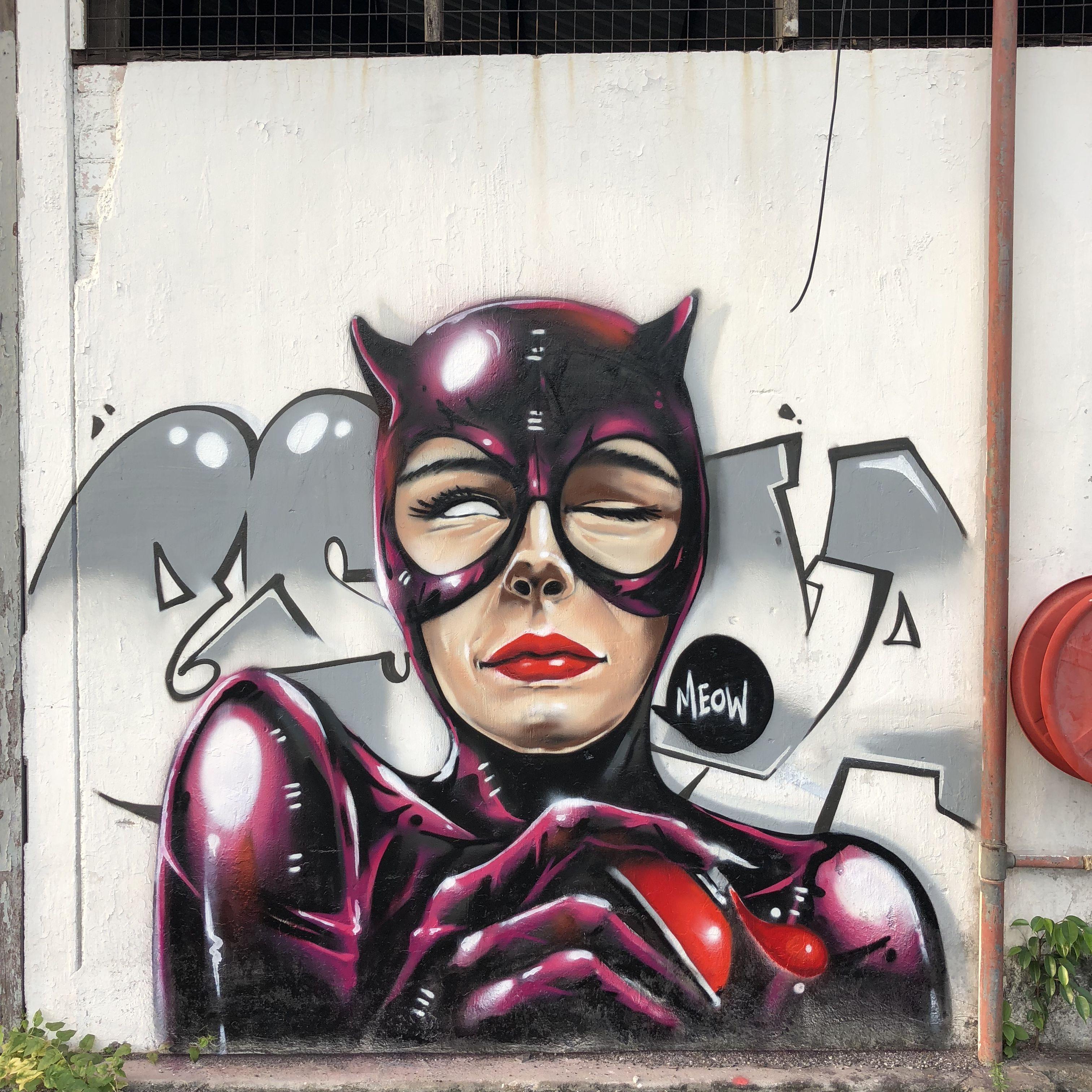 Street Art By Escape Va Catwoman