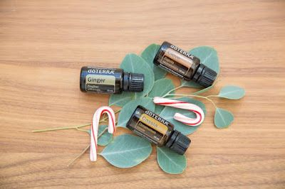 Natural Earth Oils: GINGERBREAD HOUSE  DIFFUSER BLEND