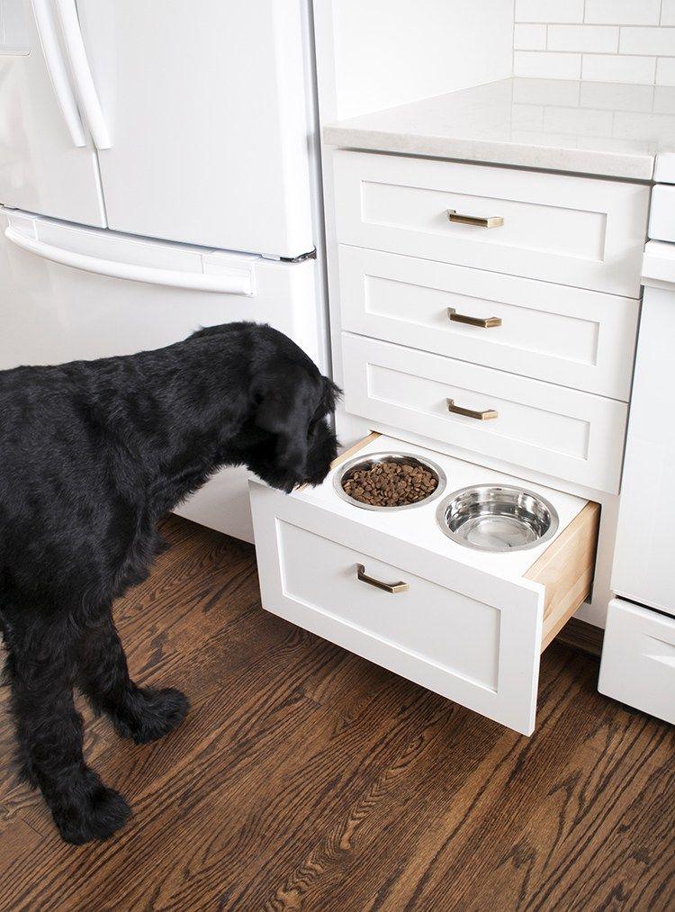 Dog Feeder Diy Giveaway Diy Dog Stuff Dog Door Dog Rooms