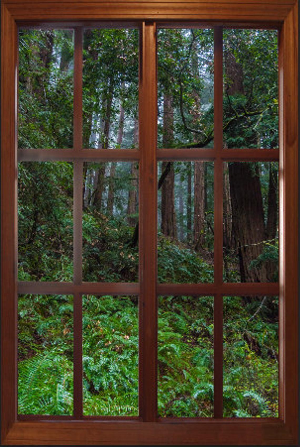 image 0 Wall murals, Faux window, Window view
