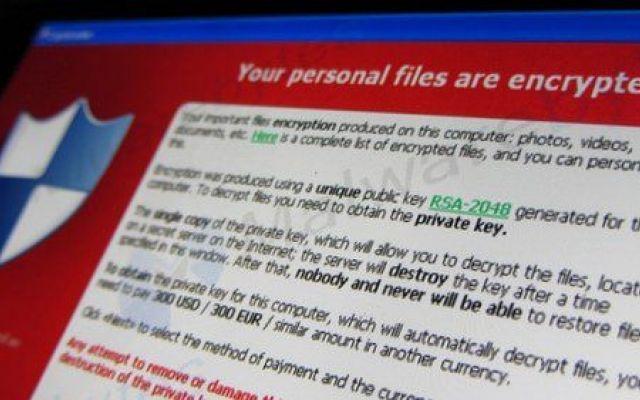 Prima Pagina | Software, Sicurezza informatica, Software house