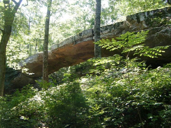 Natural Bridge In Arkansas With Images Mother Nature Nature Natural Bridge
