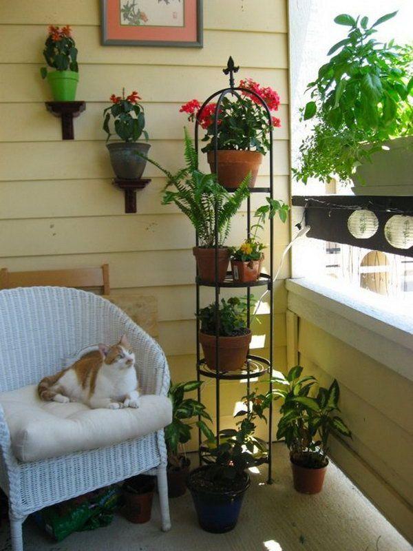 Balcony Garden Design Ideas | Balcony gardening, Balconies and Plants