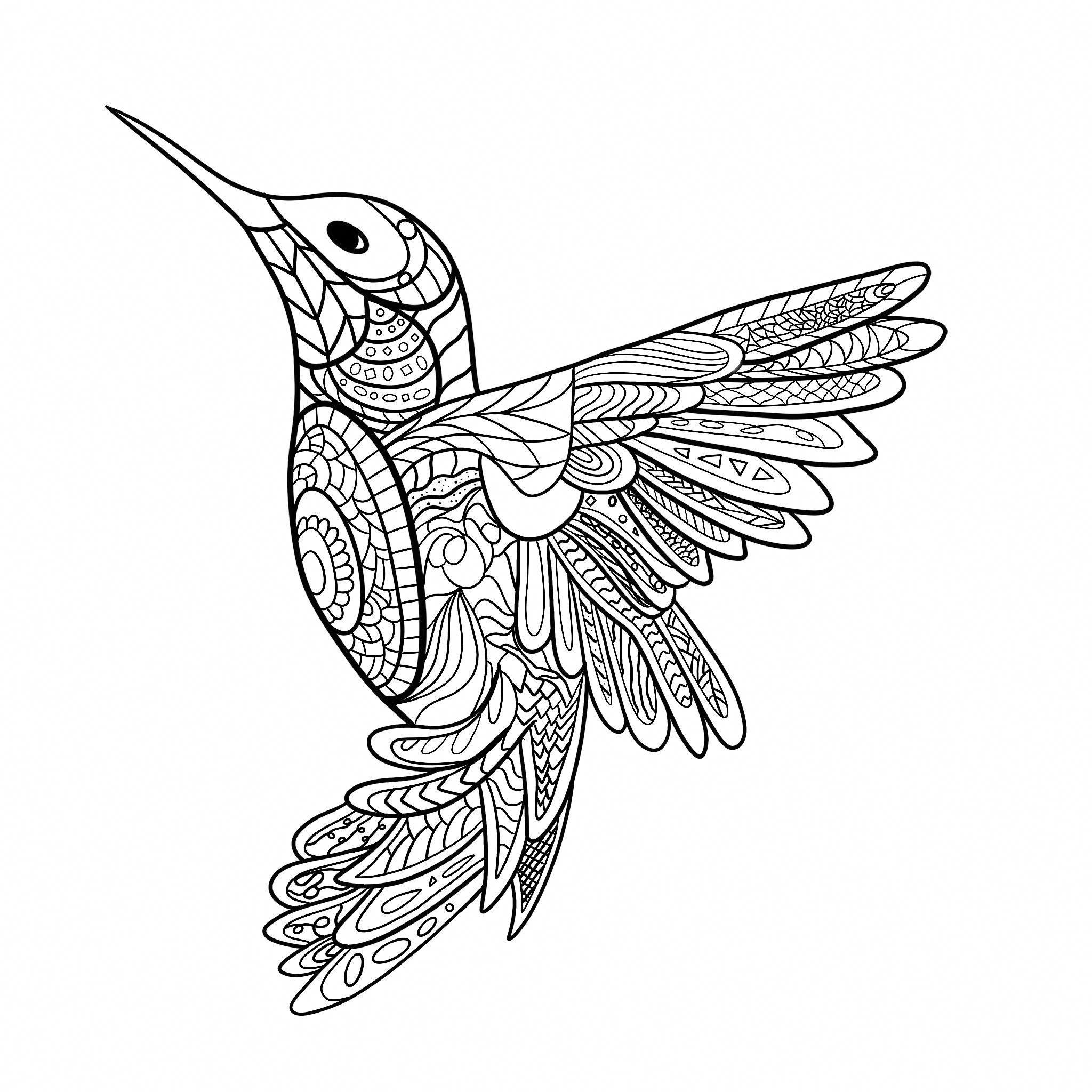Hummingbird Mandala Mandala Ausmalen Mandala Tiere Malvorlagen Tiere