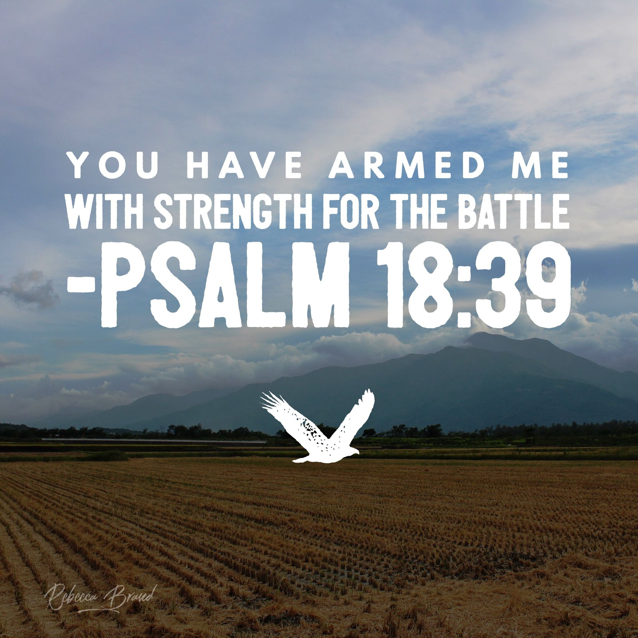 The Strength To Fight Battle Quotes Strength Bible Bible Verse