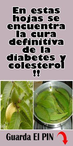hojas de dieta de diabetes