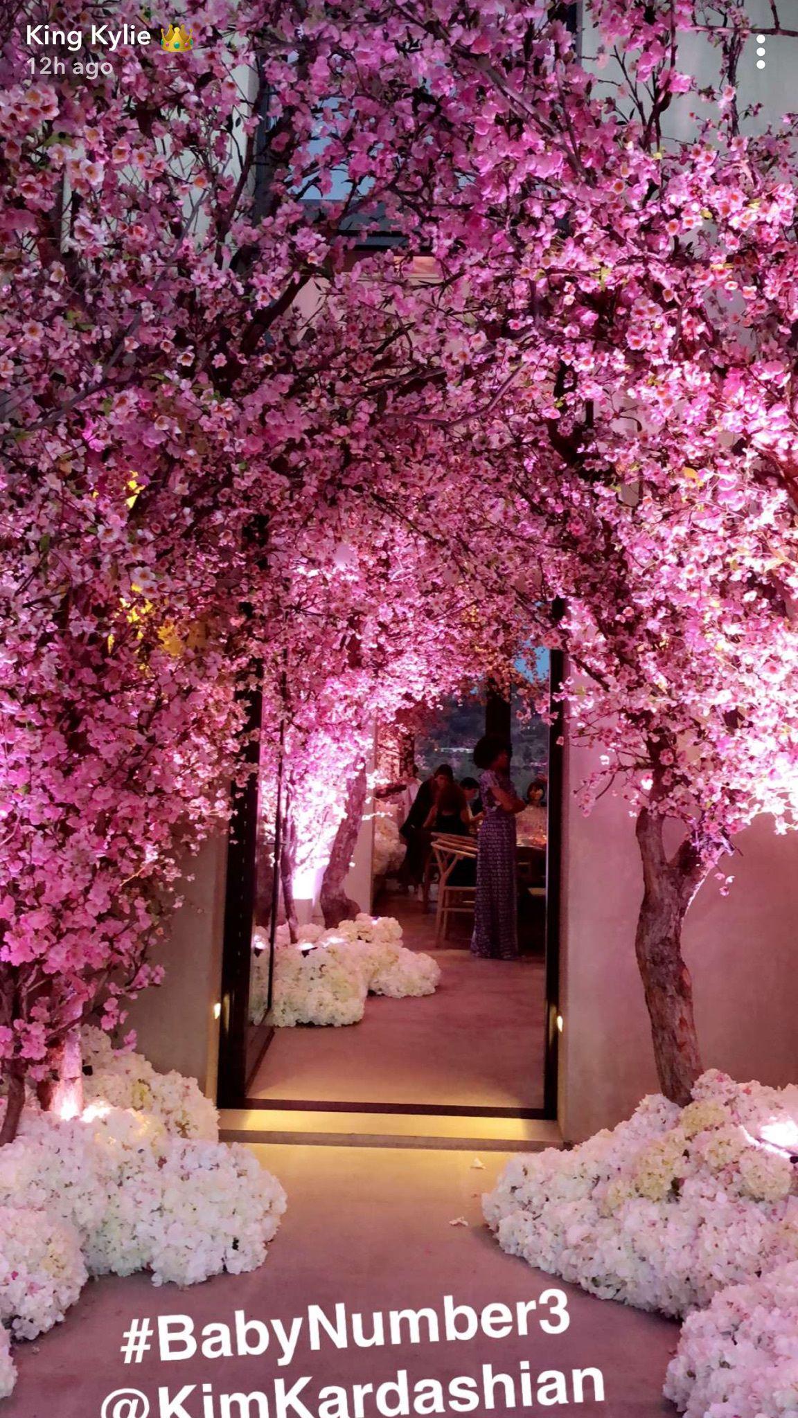 kylie jennersnapchat kim kardashian baby shower decorations wedding decorations alice