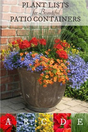 Plant Ideas for Beautiful Patio Containers (1 of 3) is part of Plants, Container gardening flowers, Container plants, Patio flowers, Porch flowers, Container gardening - Want to know the secret to beautiful garden containers  These plant lists tell you exactly which plants you need to create these eyecatching planters