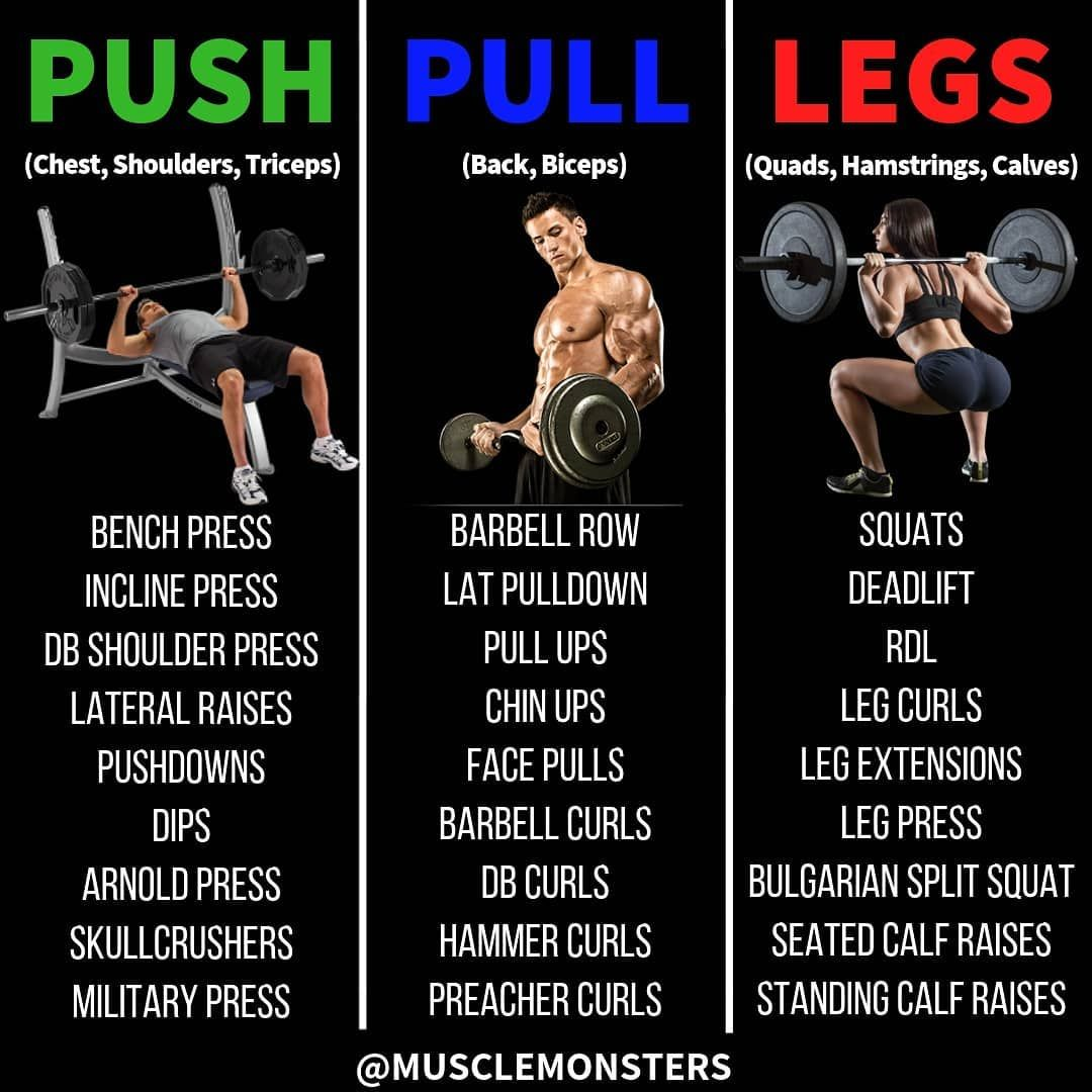 Create Your Own Push Pull Legs Routine 1 Choose 2 3 Exercises Per Muscle Group 2 Perform Weight Training Workouts Push Pull Workout Push Pull Workout Routine