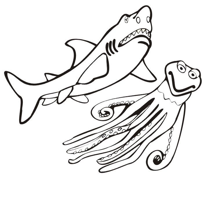 already colored Free Printable Shark Coloring Pages For