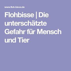 Flöhe Im Haus : fl he ungeziefer im haus floh ungeziefer ~ A.2002-acura-tl-radio.info Haus und Dekorationen