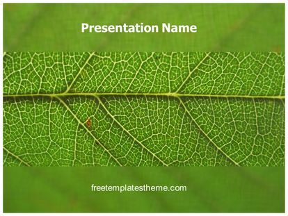 Download free leaf powerpoint template for your powerpoint download free leaf powerpoint template for your powerpoint presentation toneelgroepblik Gallery