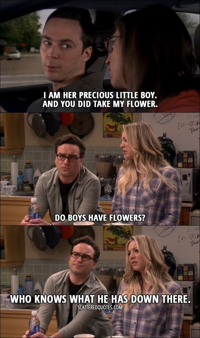 Funny big bang theory pictures 27 pics - 15 Best The Big Bang Theory Quotes From The Holiday Summation 10x12