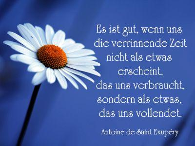 Geburtstag Gedichte Spruche Birthday Sayings Und Quotes