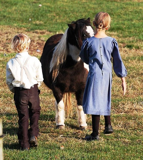 Amish Images Of People , the Plain People Amish culture