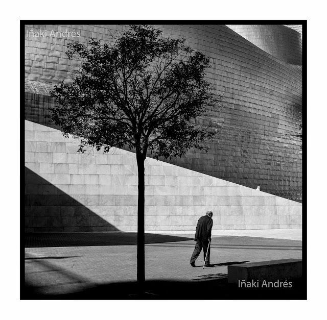 Iñaki Andrés: Tree.