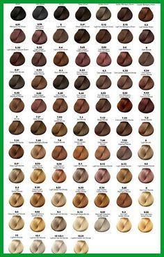 Complete Loreal Inoa Supreme Color Chart Majirel Shade Card India L Oreal Professional Inoa Hair Hair Color Chart Hair Dye Color Chart Loreal Hair Color Chart