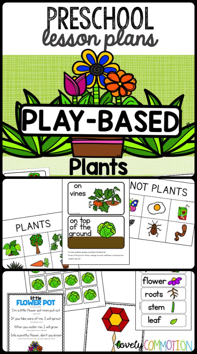 Pre Planned Flower Garden Designs: Preschool Lesson Plans- Plants