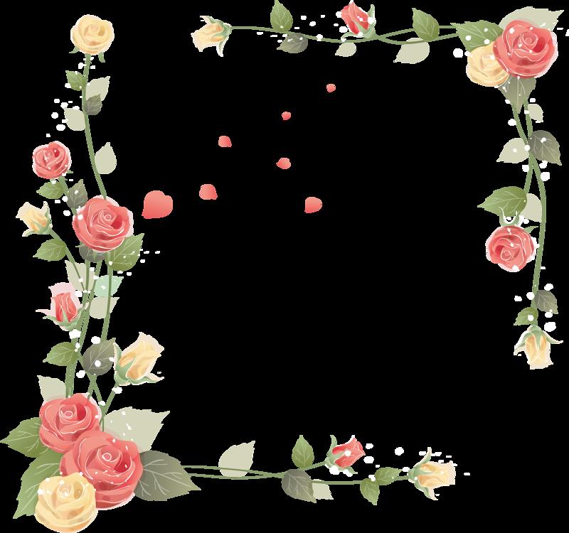 Поздравление с днем рождения с цветком ромашками вредных
