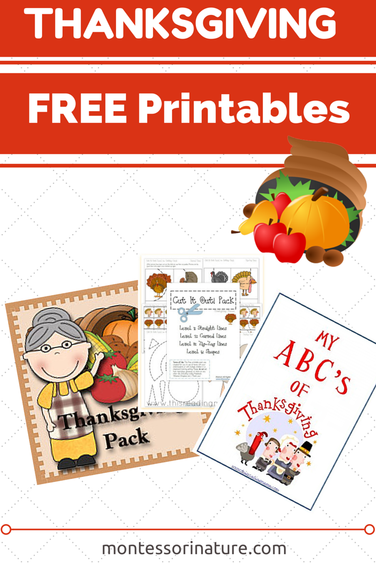 Free Thanksgiving Preschool Printables.{ Kids Learning Printables ...