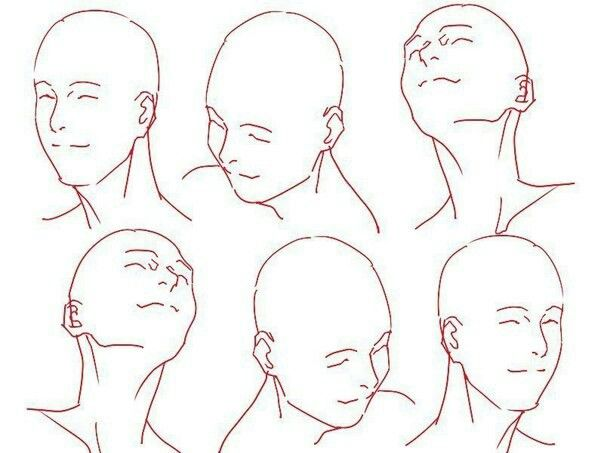 Smile Head Angled Sketches Drawings Character Design References
