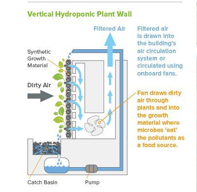 Vertical Hydroponic Plant Wall Diagram wonderful walls