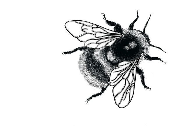 Bumble Bee Rubber Stamp - SMALL Fluffy Bumblebee - Bee - Bumble Bee - Bumblebee #rubberstamping
