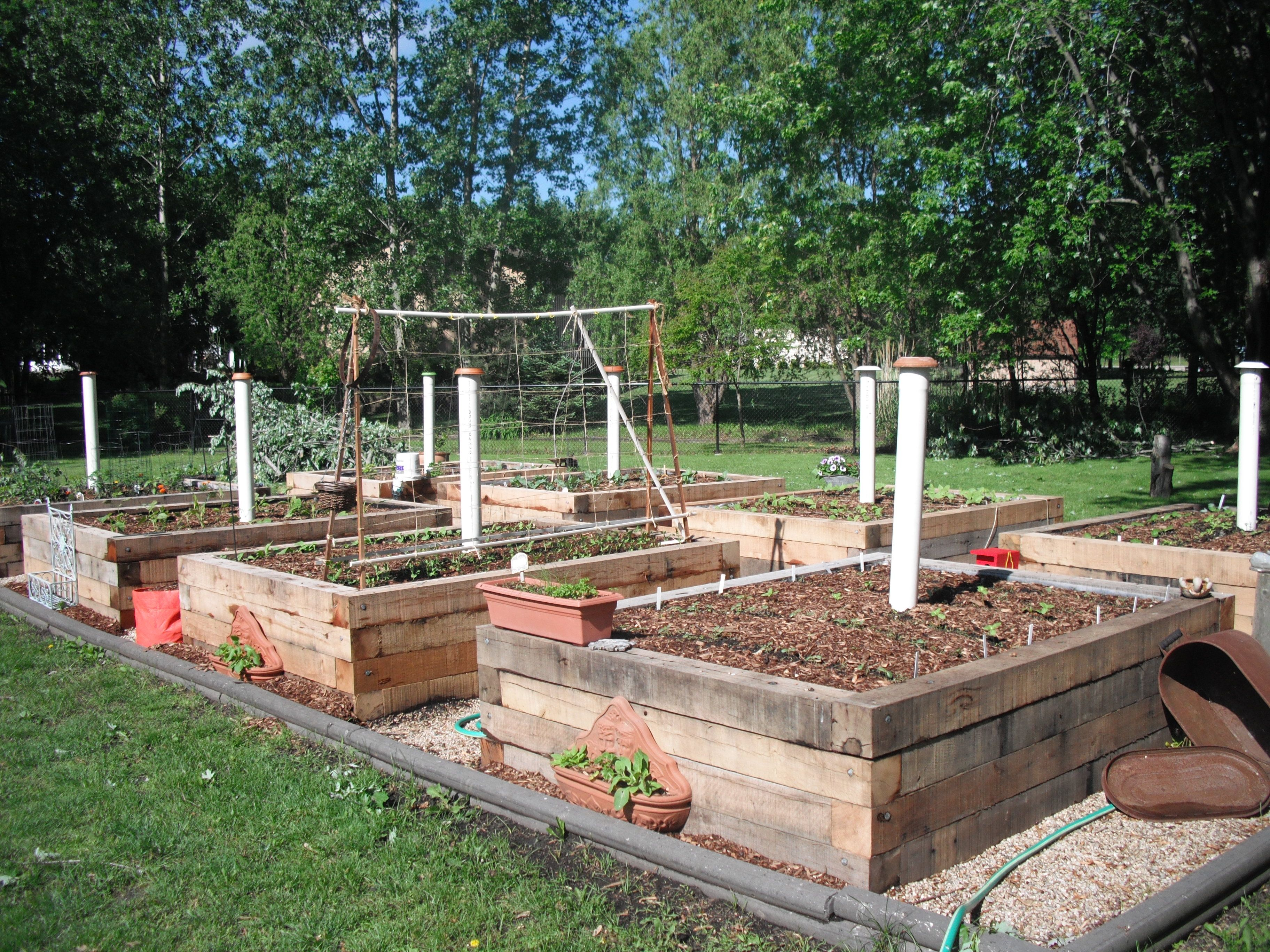Raised Vegetable Garden Made Out Pallets