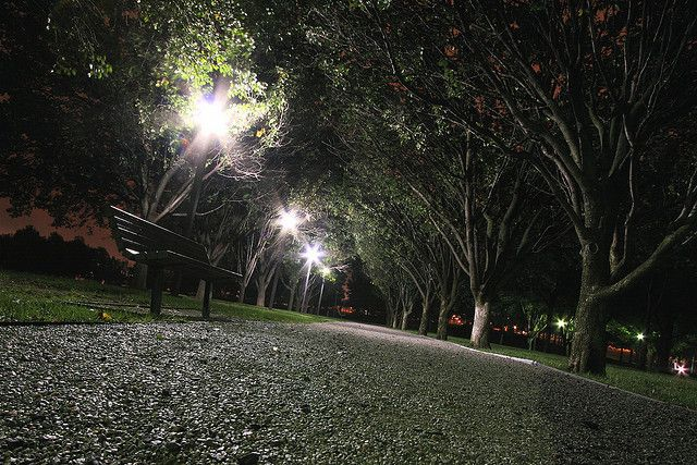 Park Bench At Night Park Bench Park Bench