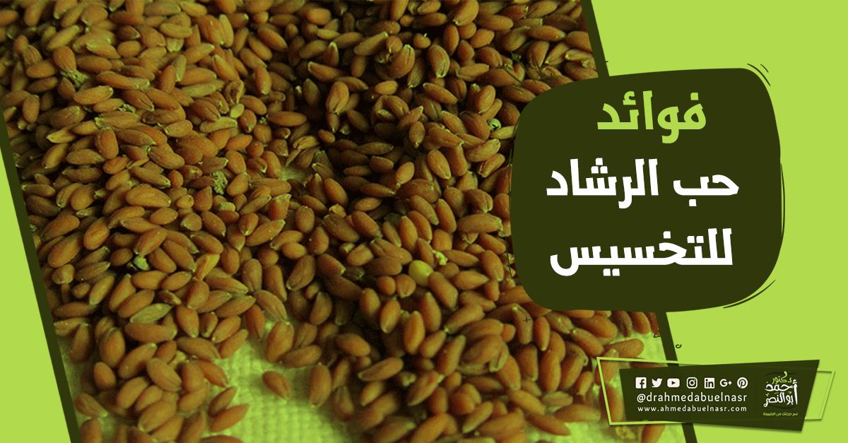 الدكتور احمد ابو النصر Vegetables Food Beans