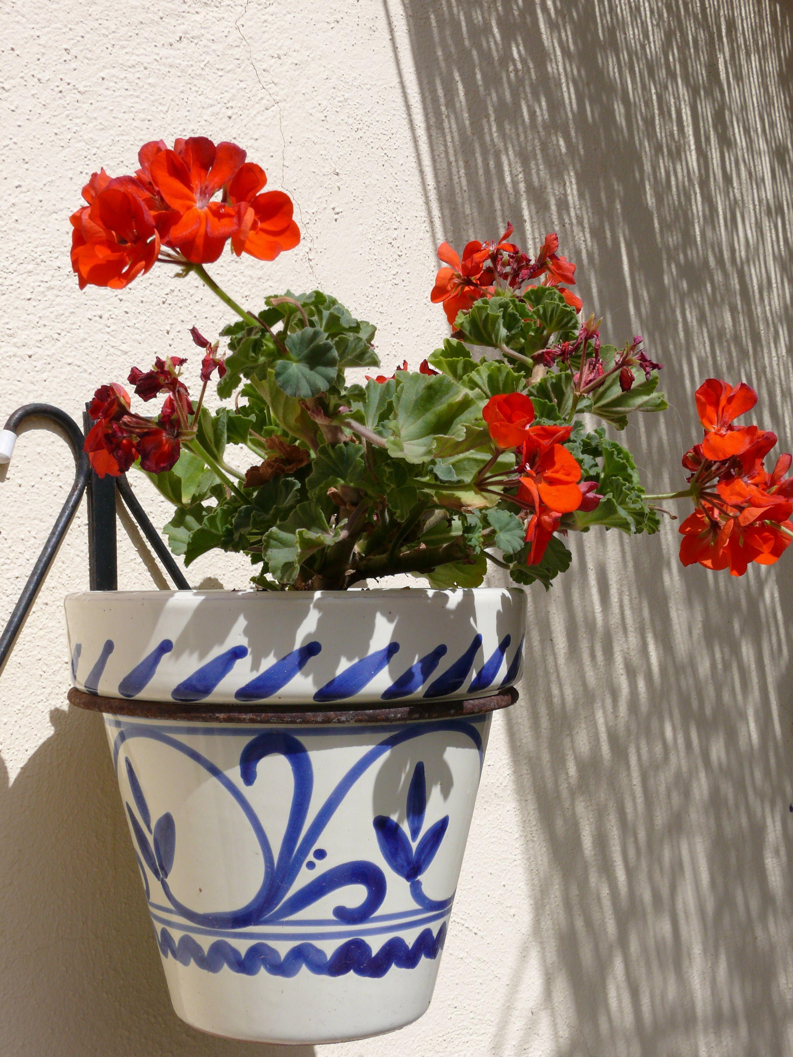 Retro blue hand painted Spanish garden pot with flowers. & Retro blue hand painted Spanish garden pot with flowers.   mi jardin ...