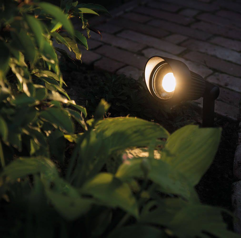 Focus 12v Plug Play Led Garden Spotlight Led Outdoor Lighting Garden Spotlights Outdoor Lighting