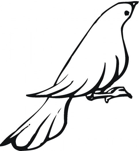 Dove 12 Mourning Dove Coloring Pages Free Printable Coloring Pages