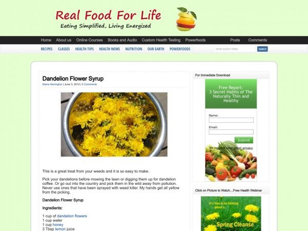 Dandelion Flower Syrup Recipe Is Delicious Real Food Recipes Lemon Health Benefits Food