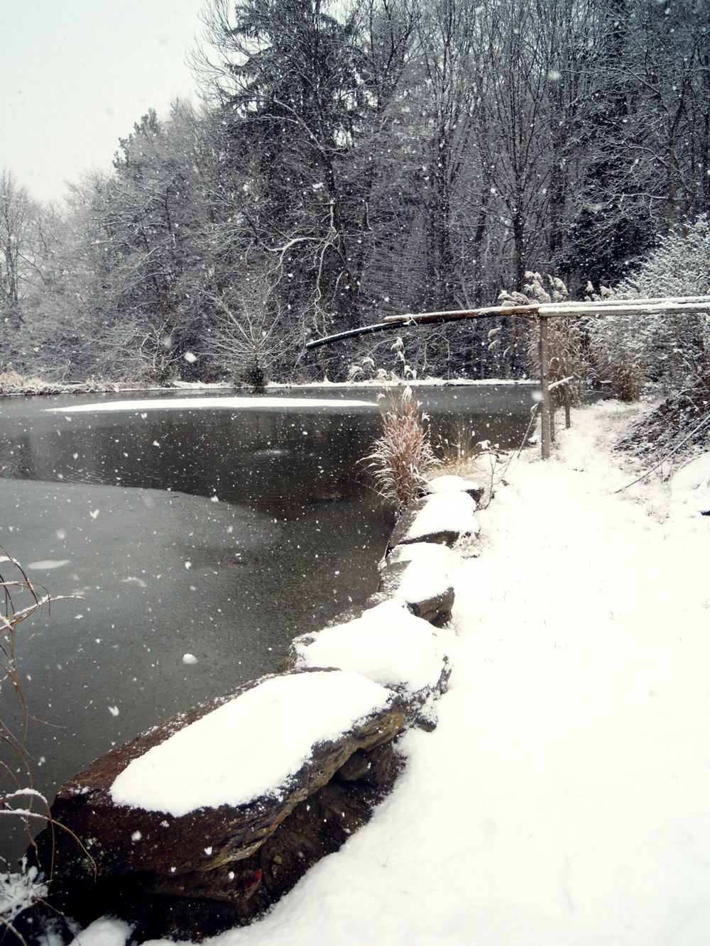 pond in the winter - taken by me