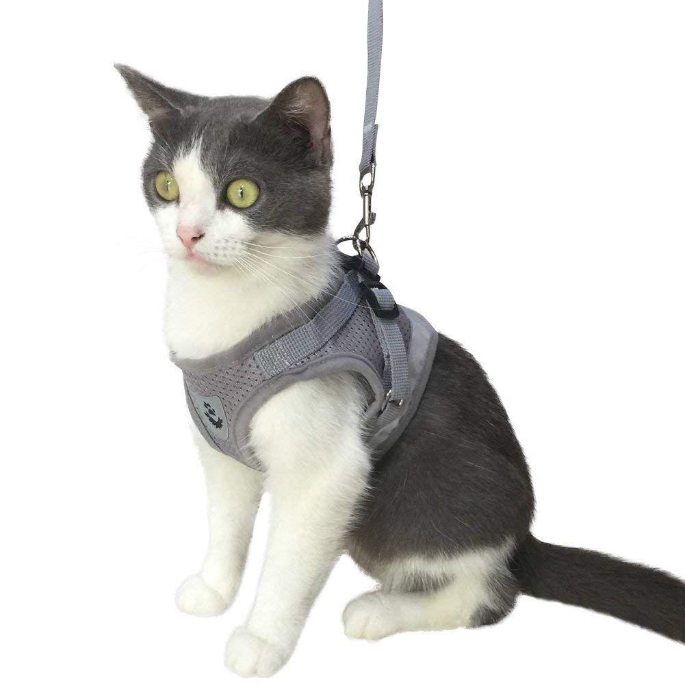 Mesh Cat Harness And Leash Set Escape Proof Cat Harness Cat Harness Pet Harness Cats