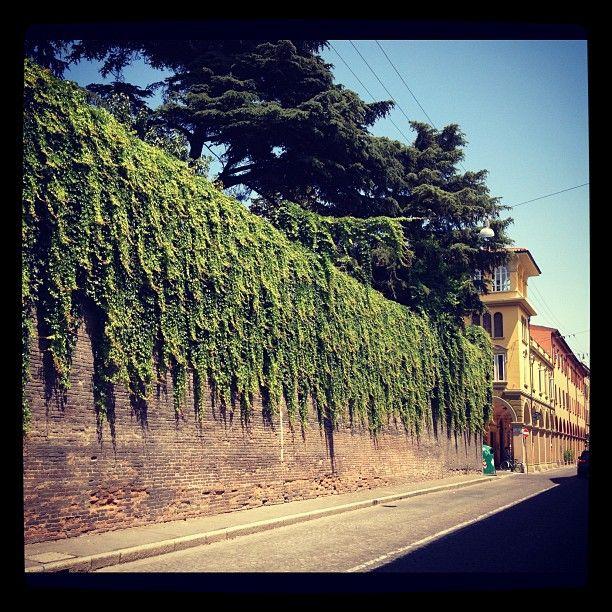 Via Urbana Bologna
